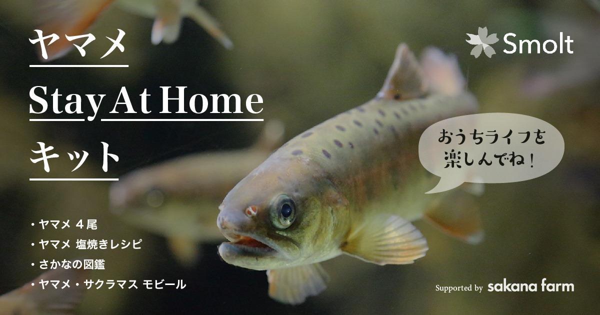上野さんが開発した「ヤマメStayAtHome」キット
