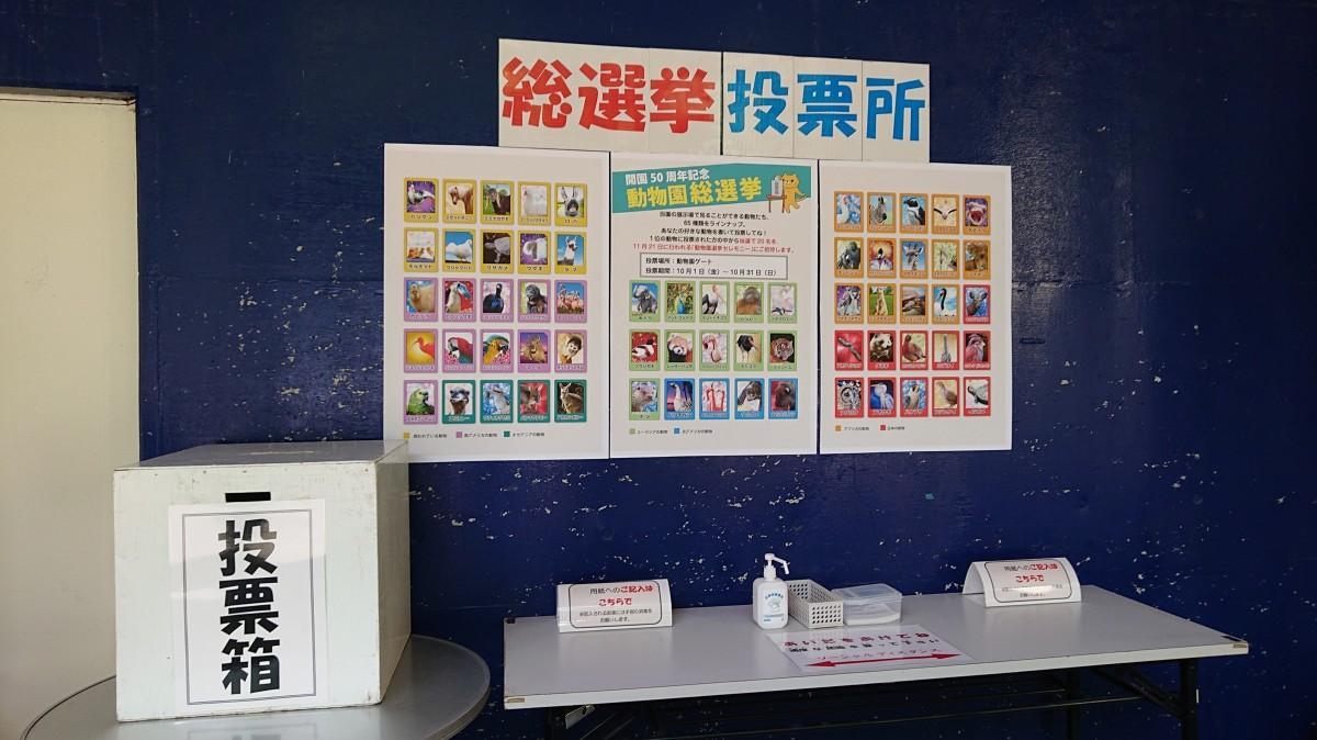 立候補する動物のポスターが貼られた投票所