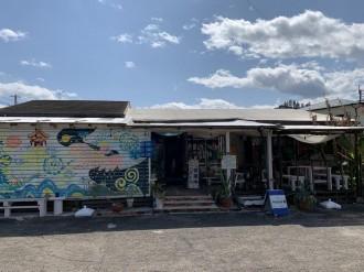 宮崎・青島に南イタリア料理「チッタ・ナターレ」 「パッパカルボーネ」三角シェフの弟子が独立