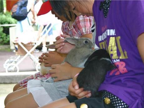 盛岡市動物公園でウサギとふれあう子どもたち(写真提供=盛岡市動物公園)