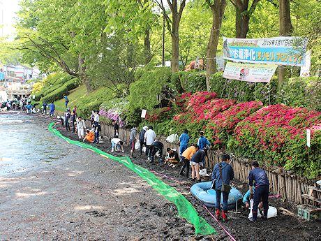 市民ボランティアにより亀ヶ池の清掃が行われた
