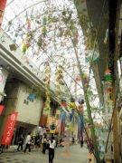 「盛岡七夕まつり」で使った竹を無償提供 竹のリサイクルと有効活用を目的に