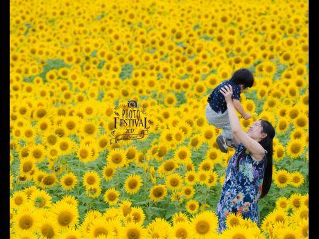 「盛岡フォトフェスティバル」実行委員による写真