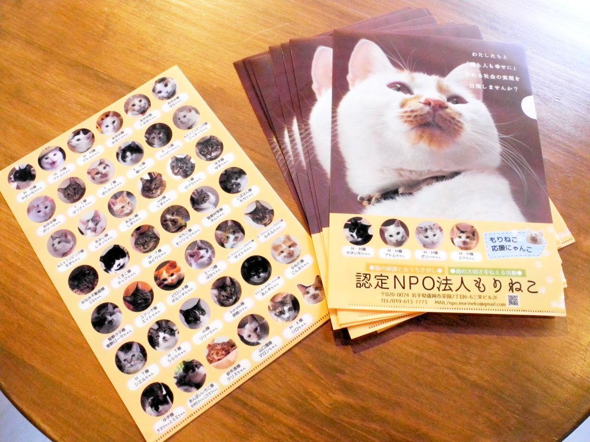 4周年記念の広報クリアファイル。45匹の猫が活動をPRする