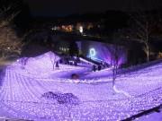 岩手・石神の丘美術館に「冬の花畑」 イルミネーションイベント今年も