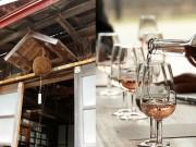 紫波町で「酒蔵びらき」今年も 地酒の魅力を町内外へ発信