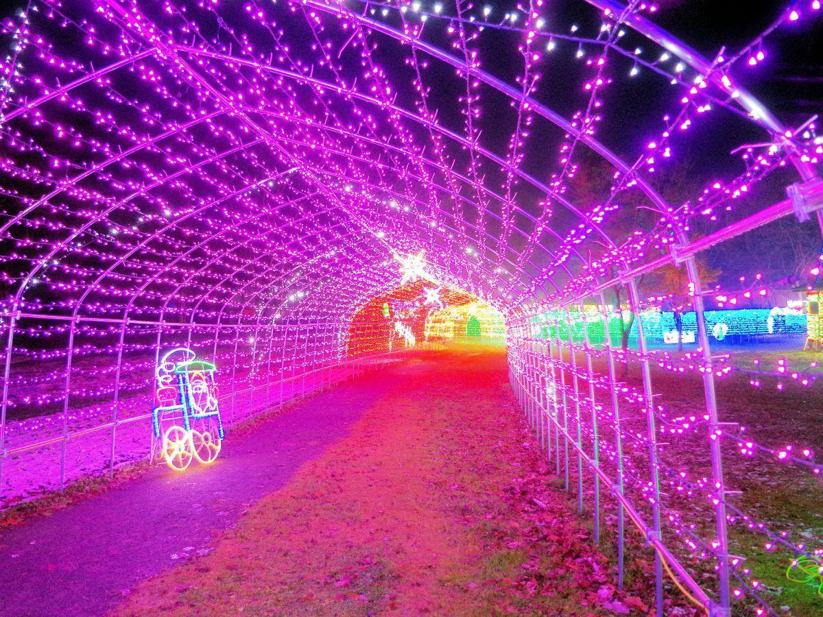 今年から登場した全長100メートルのカラフルな光のトンネル