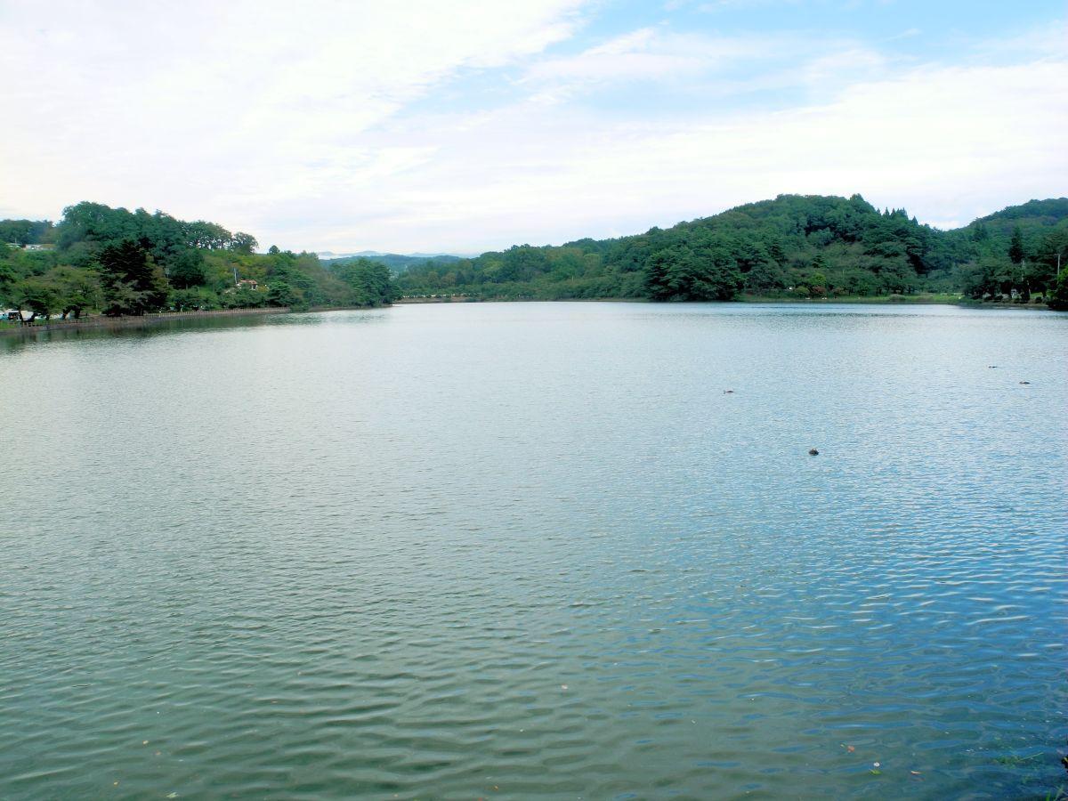 豊かな緑に囲まれ、市民からも愛される「高松の池」