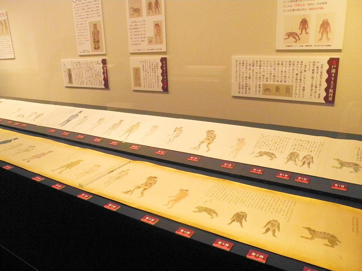 展示のメイン資料「水虎之図」には、たくさんの河童の姿が描かれている