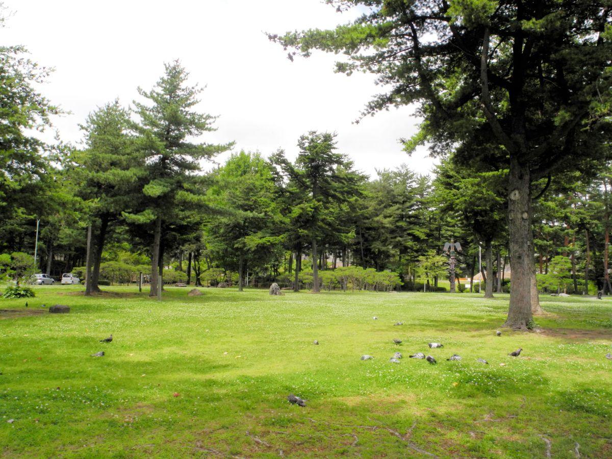 整備が予定されている盛岡城跡公園芝生広場