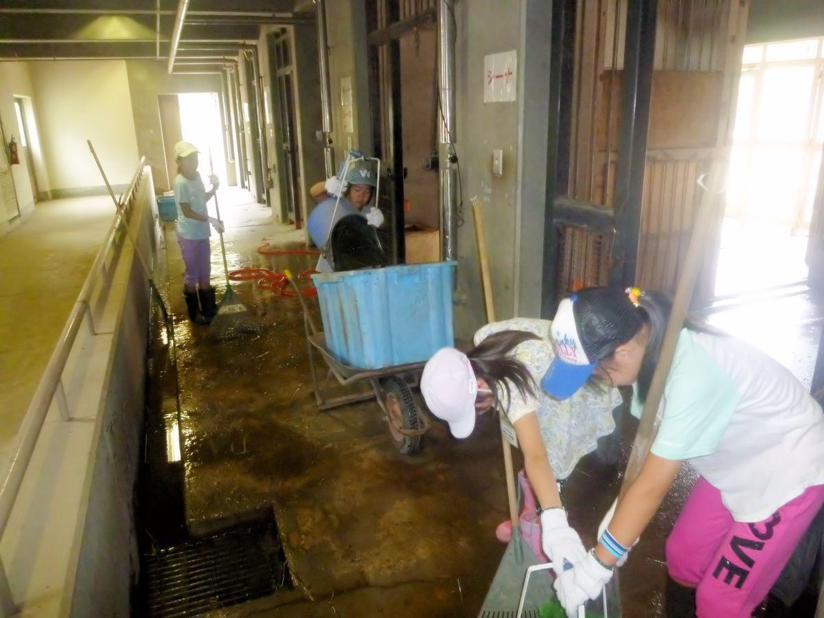以前の飼育体験の様子。動物たちが過ごす部屋の掃除に取り組む子どもたち