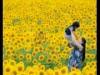 盛岡フォトフェスティバル初開催へ 写真愛好家による参加型写真祭