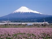 富士山の全体が見えたのは145日 昨年の富士山観測記録公開