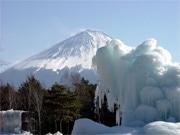 西湖野鳥の森公園で「樹氷まつり」 寒波で例年並みに成長