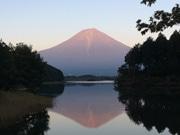富士宮市で無料Wi-Fi設置 世界遺産の構成資産など7カ所に