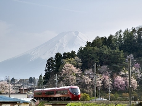 富士急行線と富士山と桜