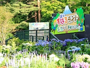富士すばるランドで「秋まつり」 移動式巨大壁や移動動物園など