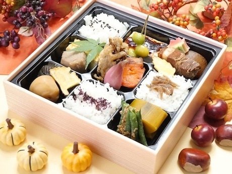 「富士山麓の味 秋風弁当」