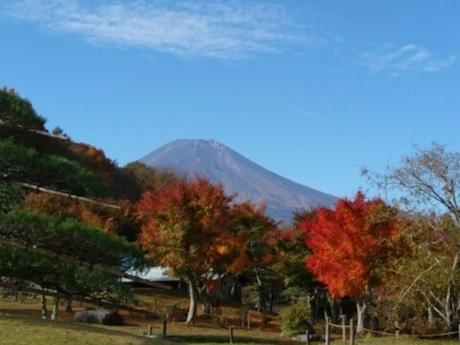 清流の里の紅葉と富士山
