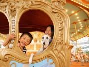 富士急ハイランドで「愛犬と入園」イベント 3つのアトラクションに同乗可能