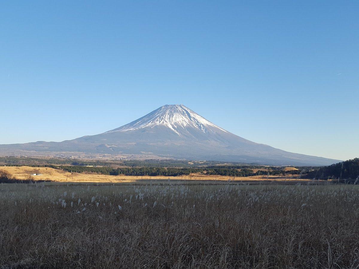 富士山の麓の草原が宿泊会場