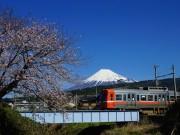 富士市で「岳南電車まつり」 体験イベントやグッズ販売など