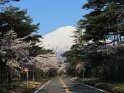 富士山5合目までの須走口登山道が開通 富士宮口・御殿場口は4月封鎖解除