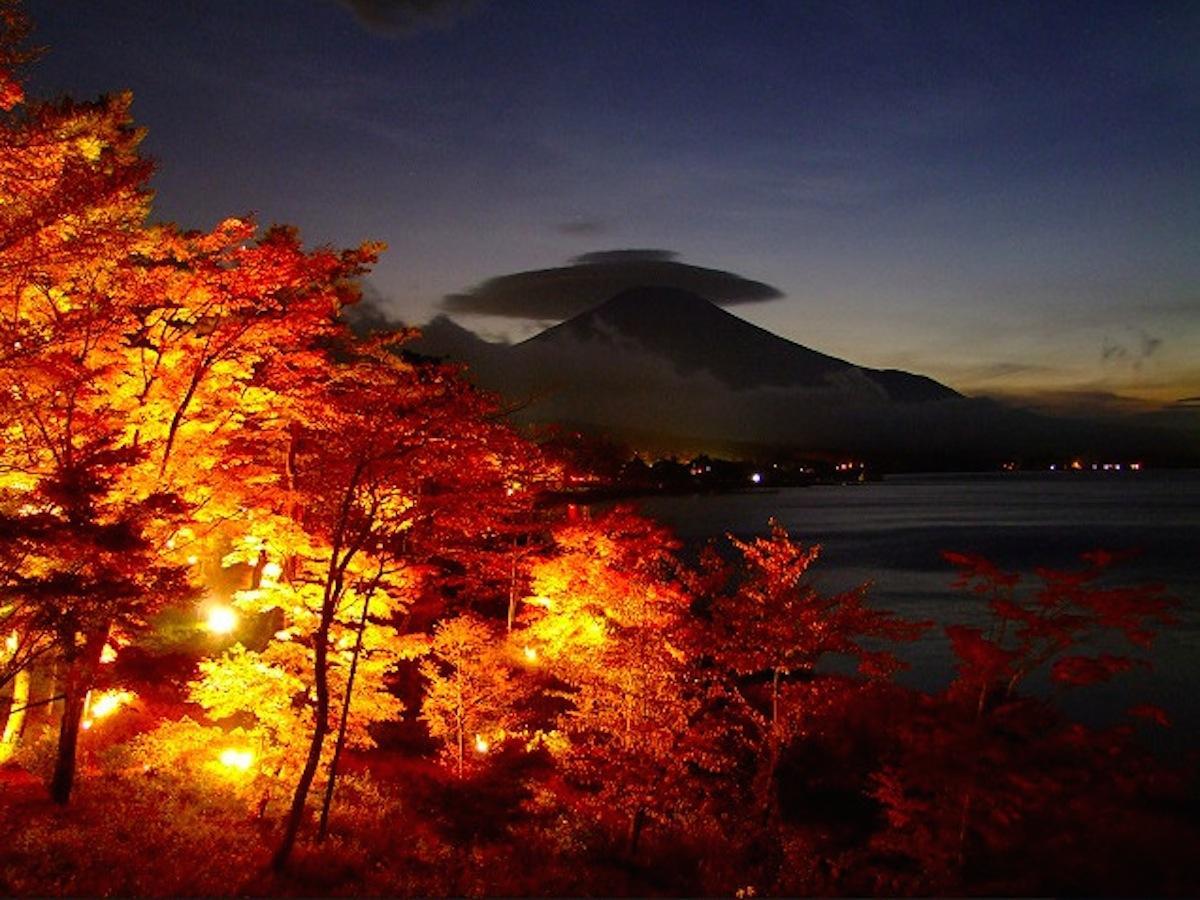 ライトアップされた紅葉とかさ雲富士山