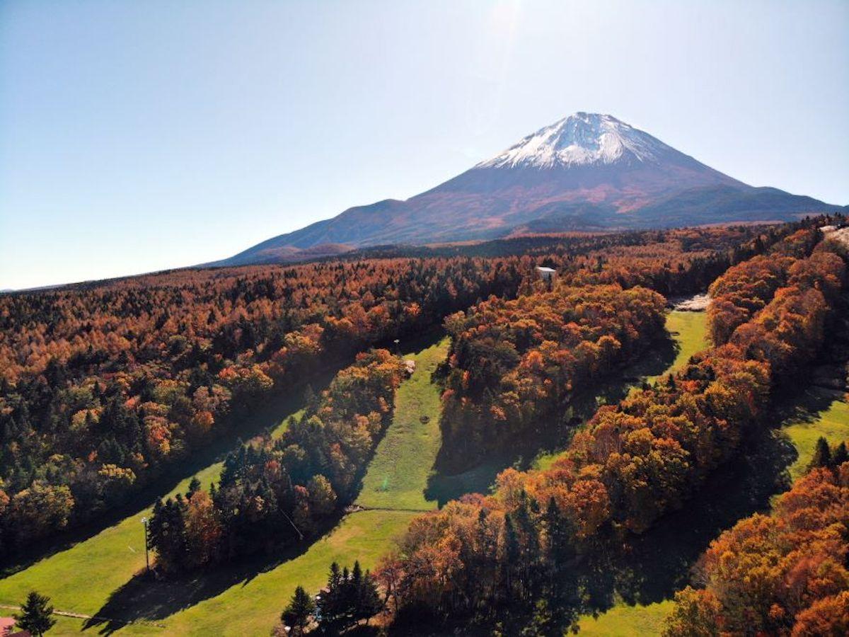 秋のトレッキングコース