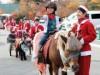 富士サファリパークでクリスマスイベント クリスマスパレードや馬ソリなど
