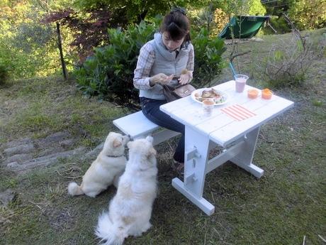 食事中の客を見上げる福岡さんの愛犬。「決して与えないでください」と注意書きも