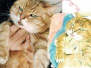 長崎のイラストレーターが「尾曲がり猫イラスト集」製作プロジェクト