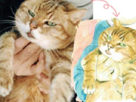 猫の写真(左)と描かれたイラスト