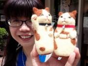 長崎のふんどし専門店が手作り羊毛グッズ「カステラねこ」