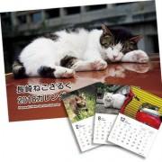 「長崎ねこさるくカレンダー」2018年版販売へ
