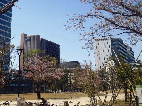 平成 大学 帝京