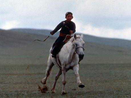 「白い馬」(1995年)のワンシーン