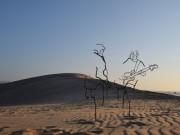 中野で徳持耕一郎さん個展「鉄筋彫刻の世界」 線で立体感を追及した作品30点