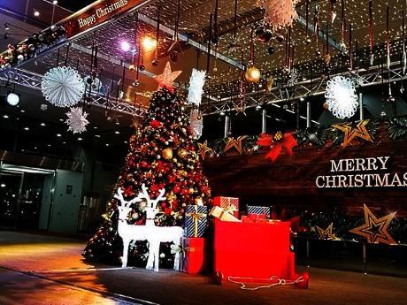 中野サンプラザ1階ロビーにお目見えしたクリスマスツリー