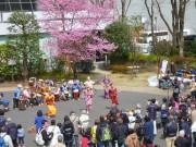なかのZEROで国際交流フェスタ 民族衣装体験や外国人向け日本文化交流も