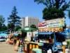 中野四季の森公園でハワイアンイベント 「ビーチウオークストリート」出現