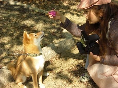 高津神社での撮影の様子