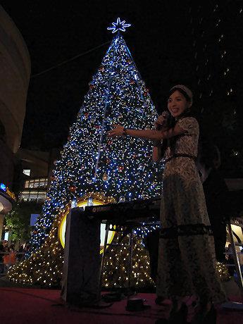 城南海さんの合図でクリスマスツリーが点灯した