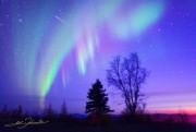 心斎橋のホテルで「アラスカ」写真展-オーロラや自然の神秘を撮影
