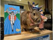 心斎橋のホテル支配人が「ウサギ」だと話題に  客の「忘れ物」きっかけで