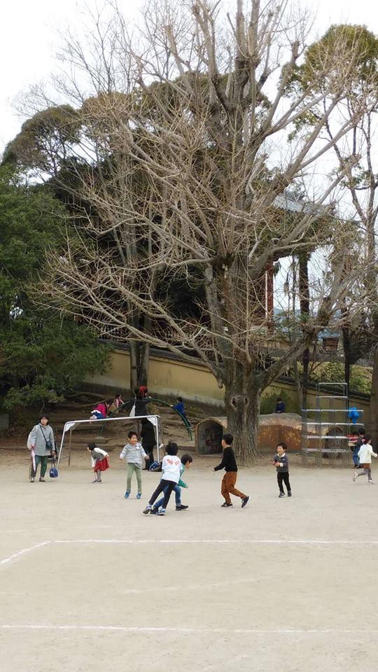 様々な年齢の子どもが全力で遊ぶ