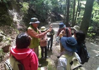 「春日山自然学校」開校 奈良公園・春日山原始林で自然・歴史を学ぶ