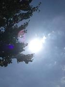 練馬の7月は暑かった 観測所移転後の7月最高気温を更新