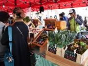 石神井公園駅で「マルシェ」 区産野菜販売、来場者でにぎわう