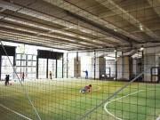 大泉学園町・関越道高架下に区立施設 健康増進施設やスポーツ施設など
